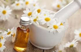 chamomile oil for anxiety