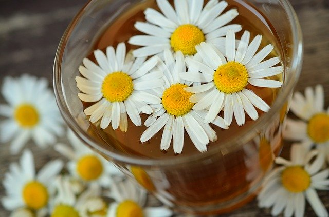 bedtime-drinks-for-weight-loss-chamomille